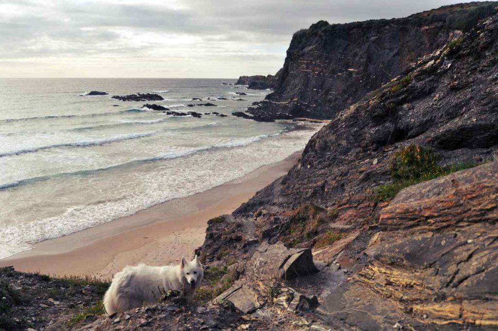 Plaże Costa Alentejana - Praia da Pedra da Bica - klify