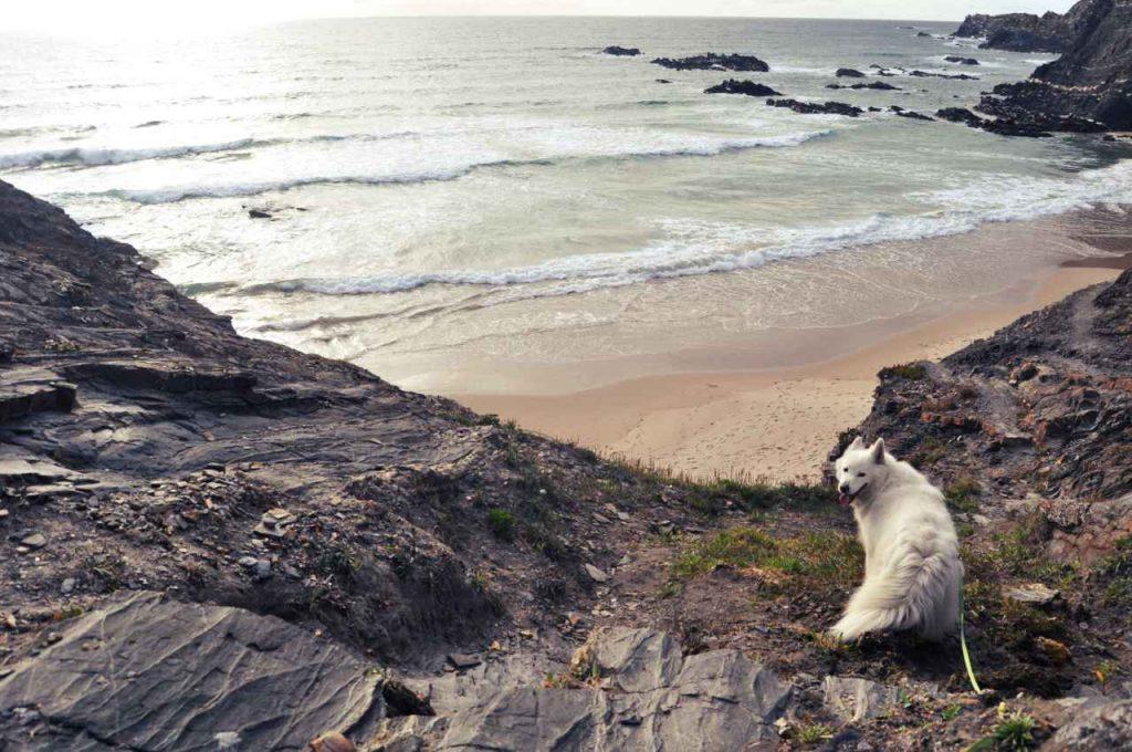 Plaże Costa Alentejana - Praia da Pedra da Bica - skały