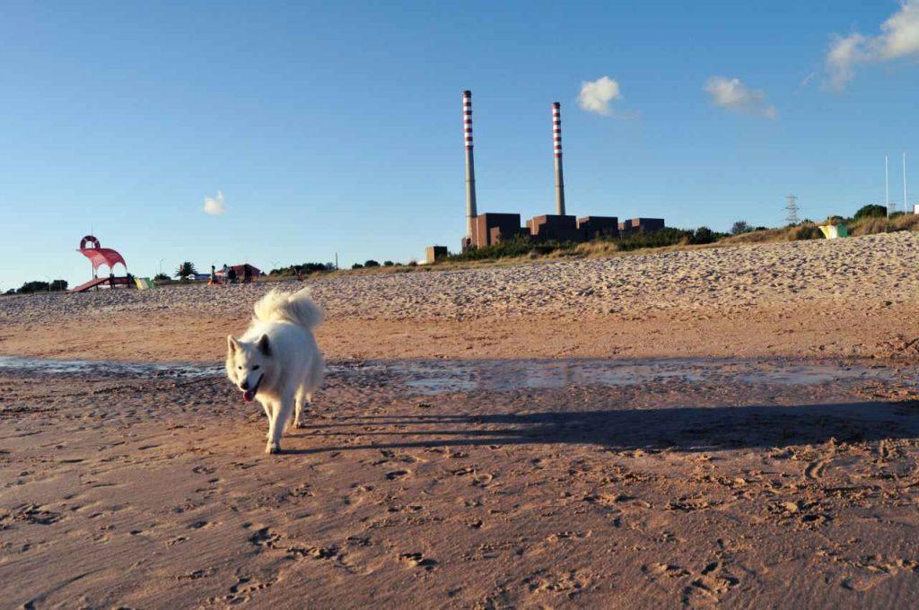 Plaże Costa Alentejana - Praia de Sao Torpes - elektrownia