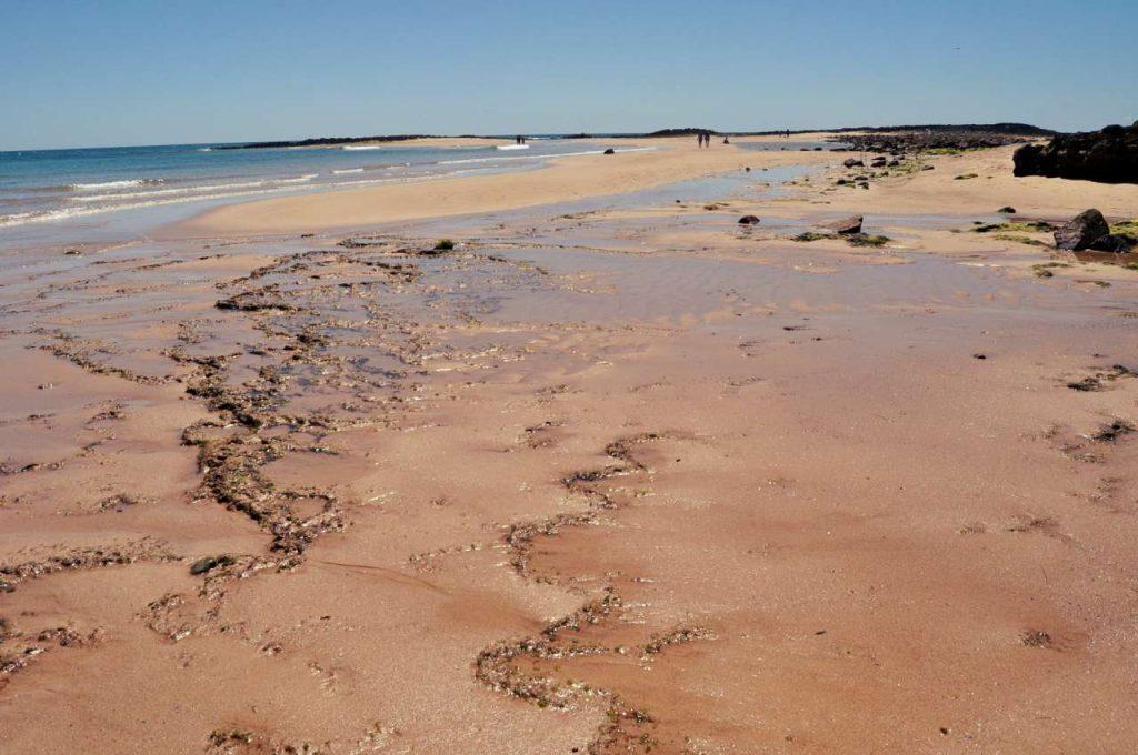 Portugalia Plaże Costa Alentejana - Praia do Farol