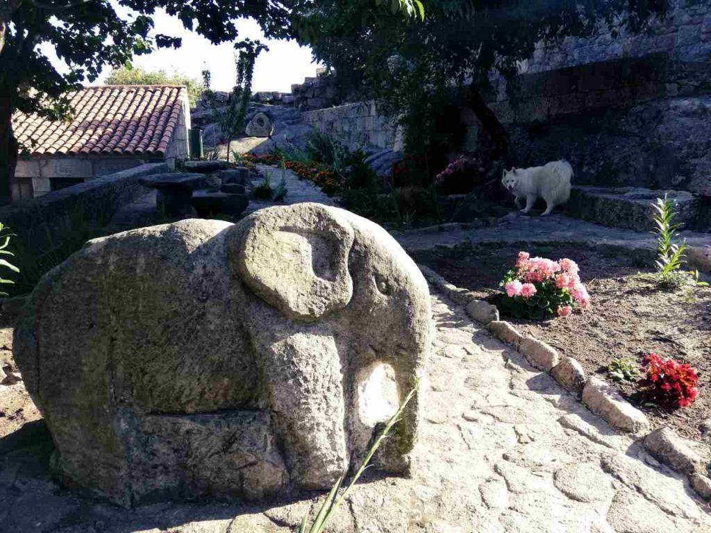 Sortelha - słoń
