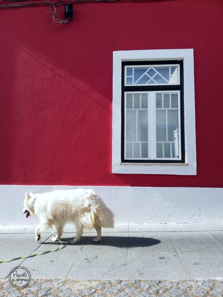 Grândola - czerwony budynek