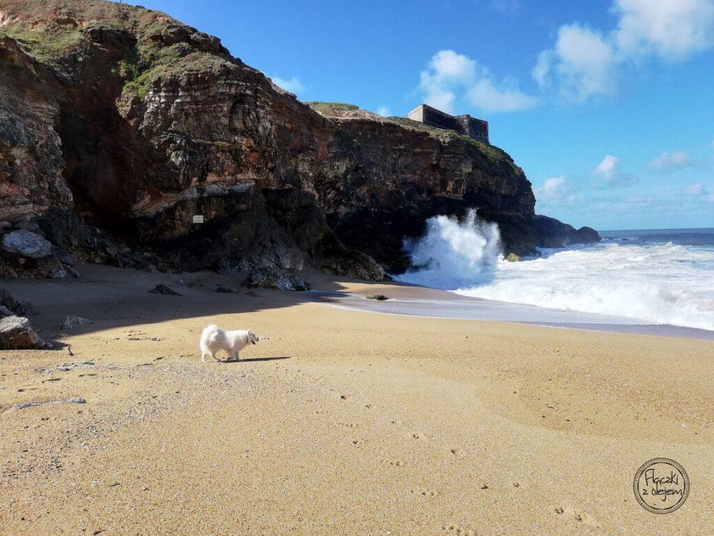 Portugalia - Nazare - klify - Praia do Norte